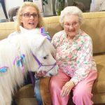 Pony Visiting An Elderly Lady