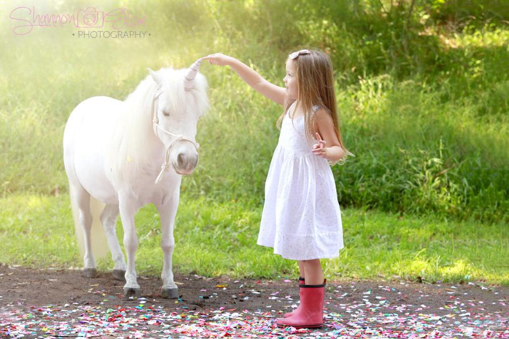 Unicorn Pony And Little Girl