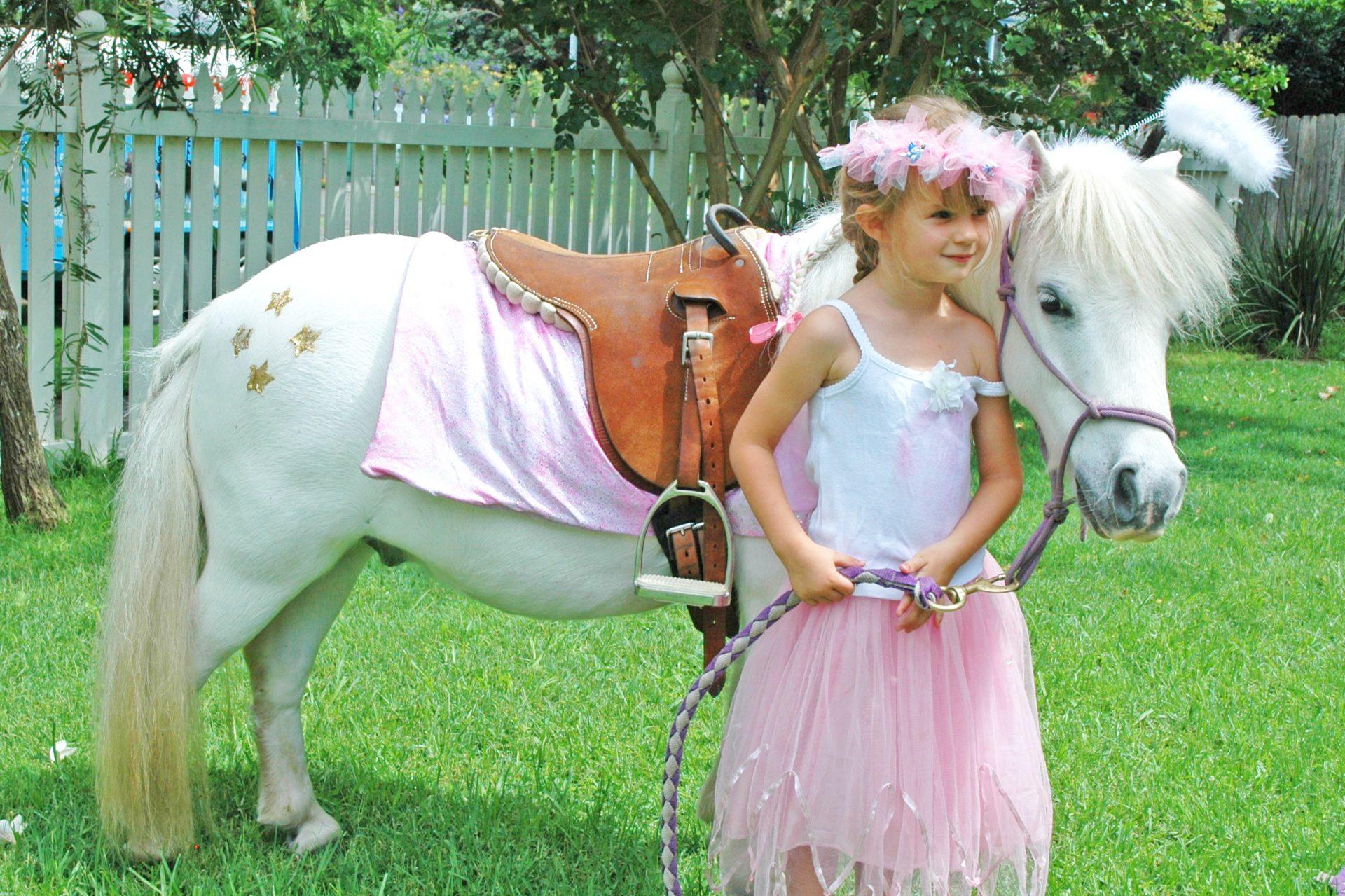 Angel Pony