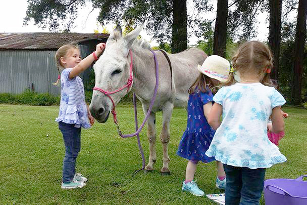 Children Playing With Donkey