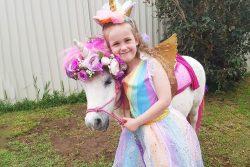 Unicorn / Fairy