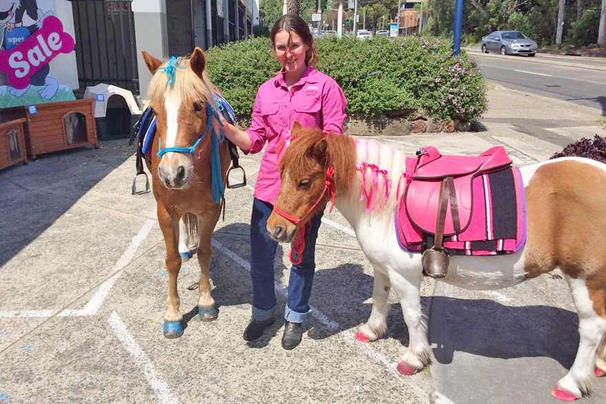 Ponies With Handler