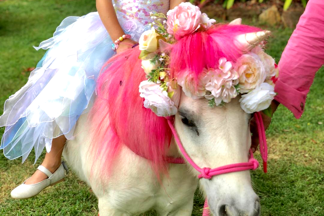Pony With Pink Mane And Flowers