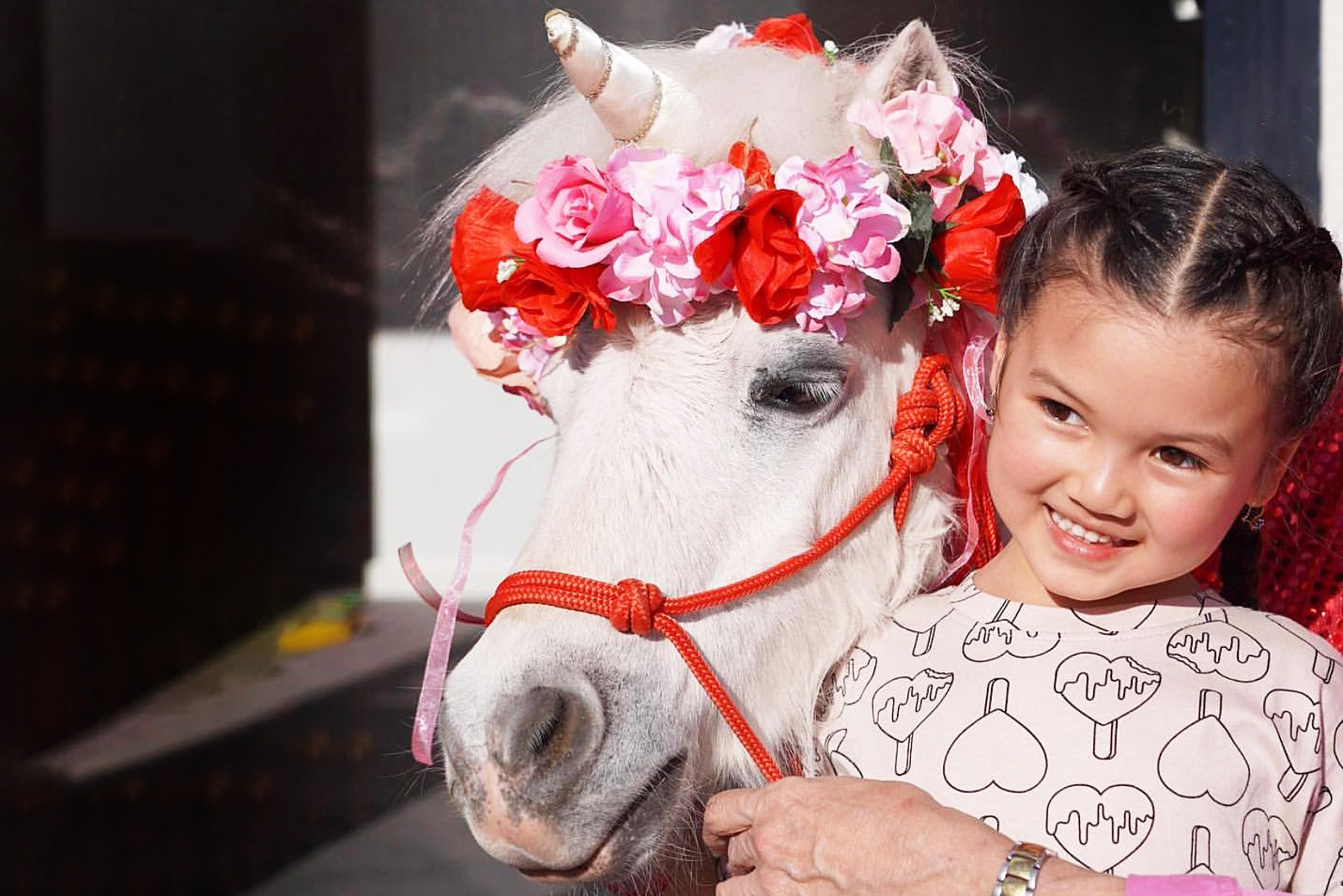 Smiling Girl With Flower Pony