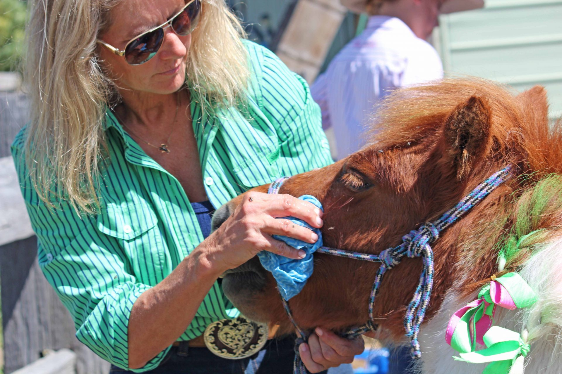 Woman Wiping Pony's Face